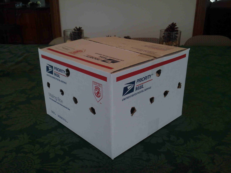 shipping box.jpg