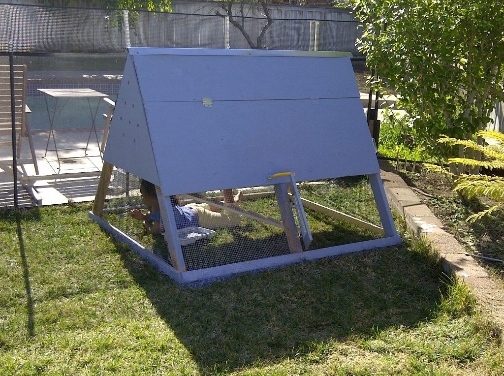 Coop casa vista a la piscina backyard chickens community for Piscina desmontable 2x4