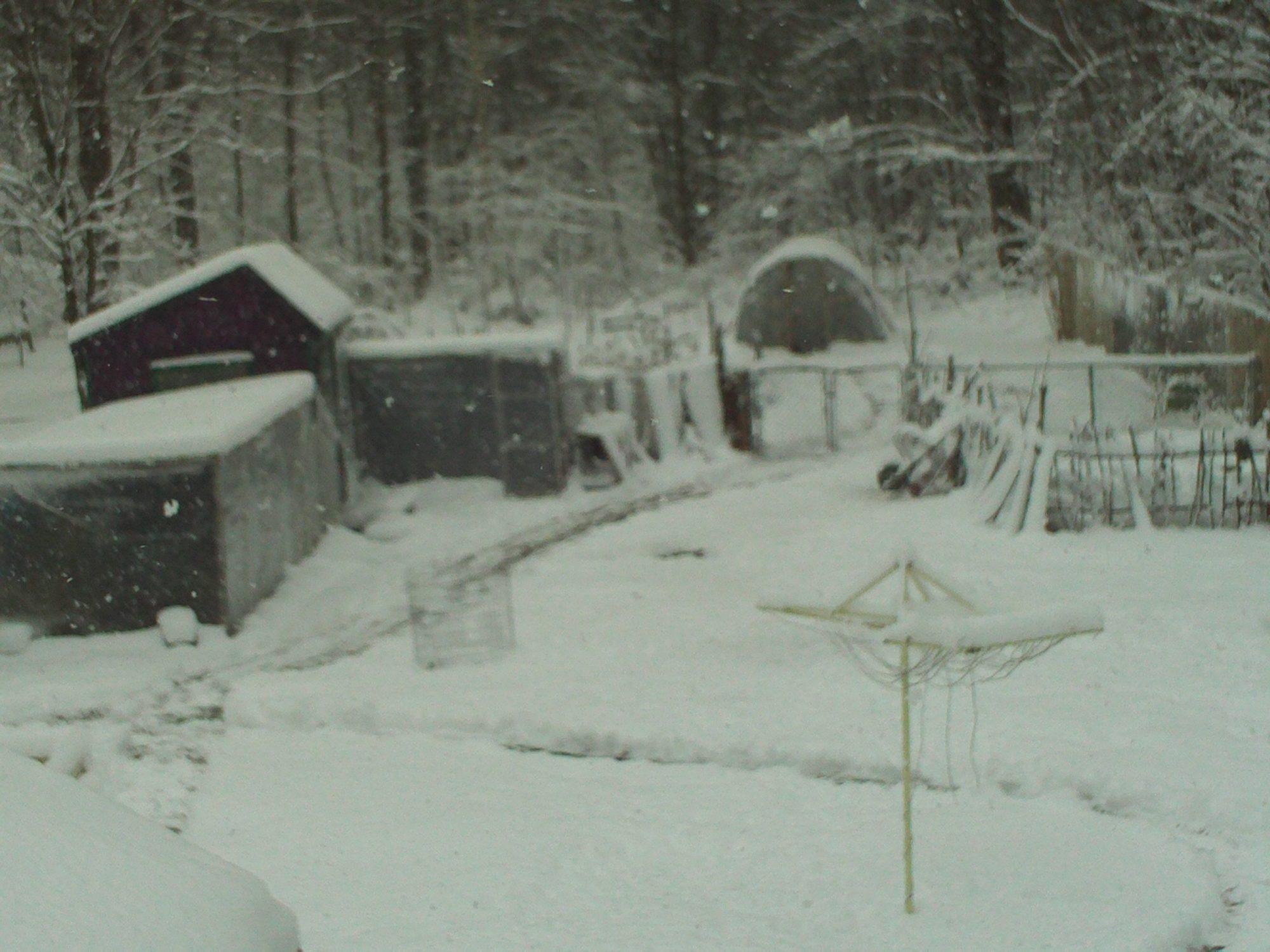 winter 2012 first snow 006.JPG