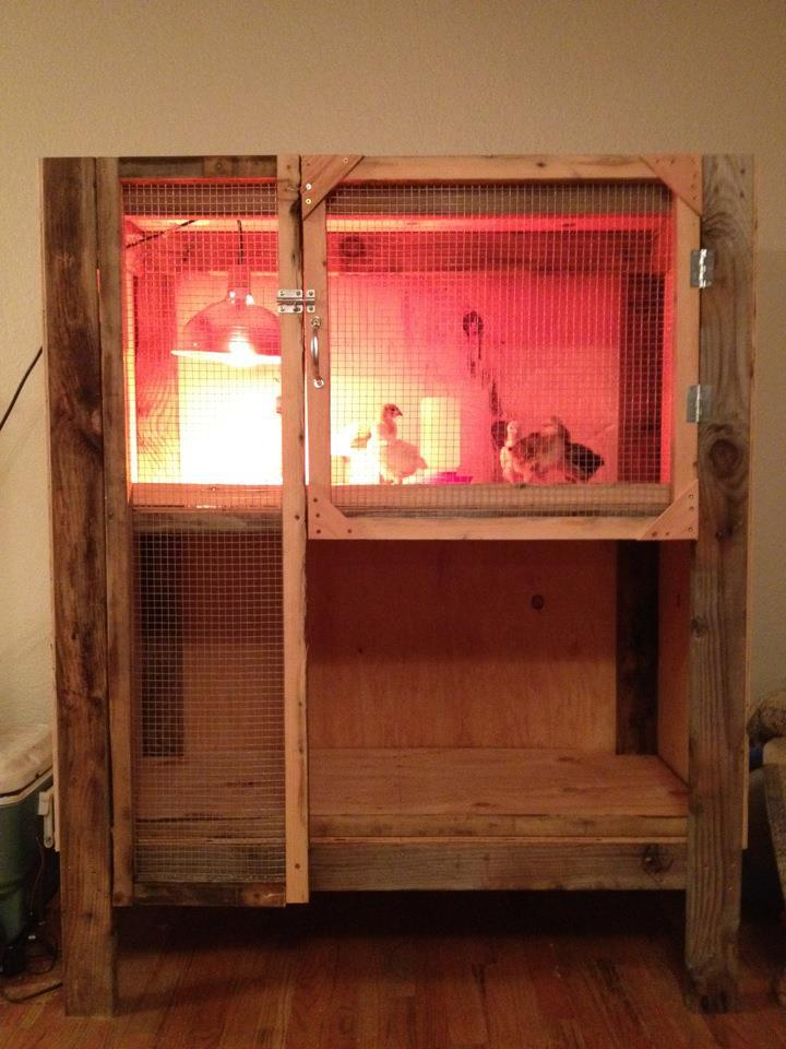 Brooder almost done.jpg