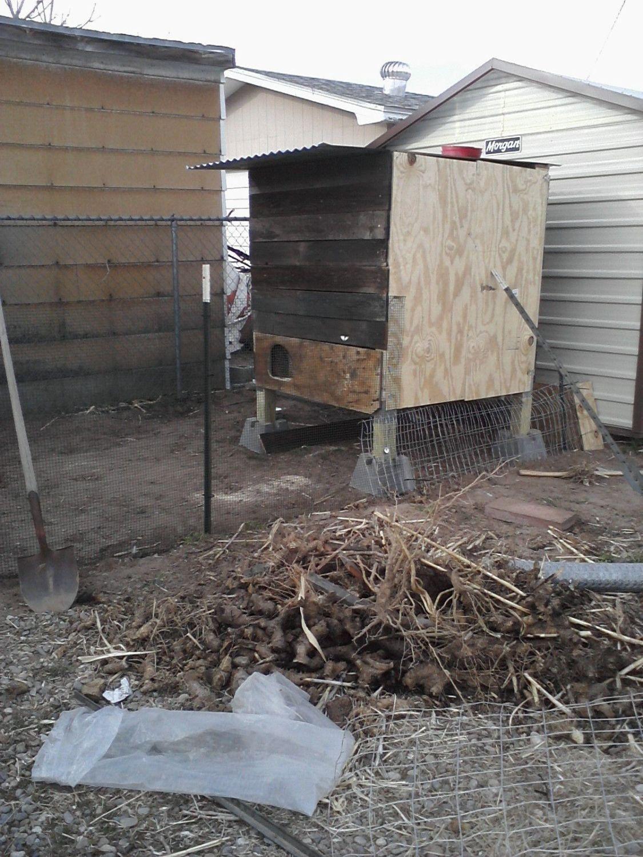 Chick House.jpg