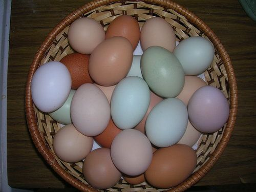 Basket of easter eggs.jpg