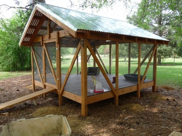 Ducks and duck house for Duck hutch ideas