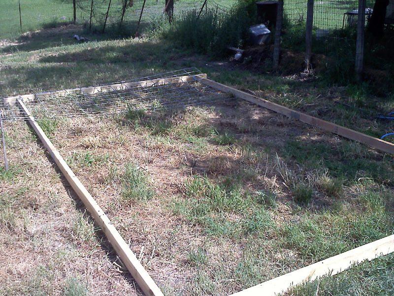 hoop coop 1.jpg