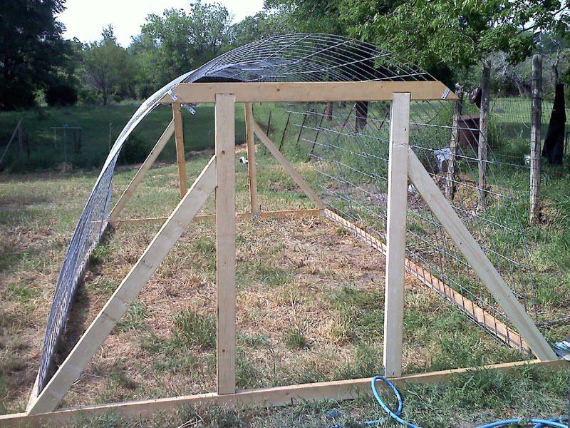hoop coop 6.jpg