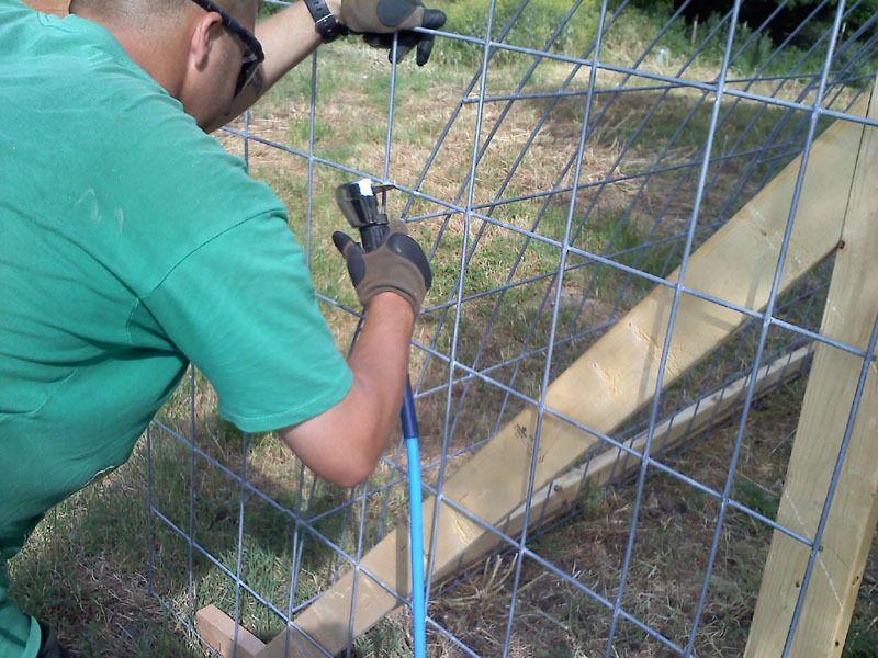 hoop coop 8.jpg