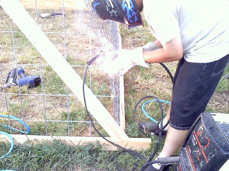 hoop coop 10.jpg