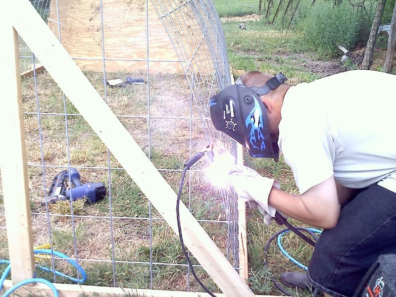 hoop coop 11.jpg