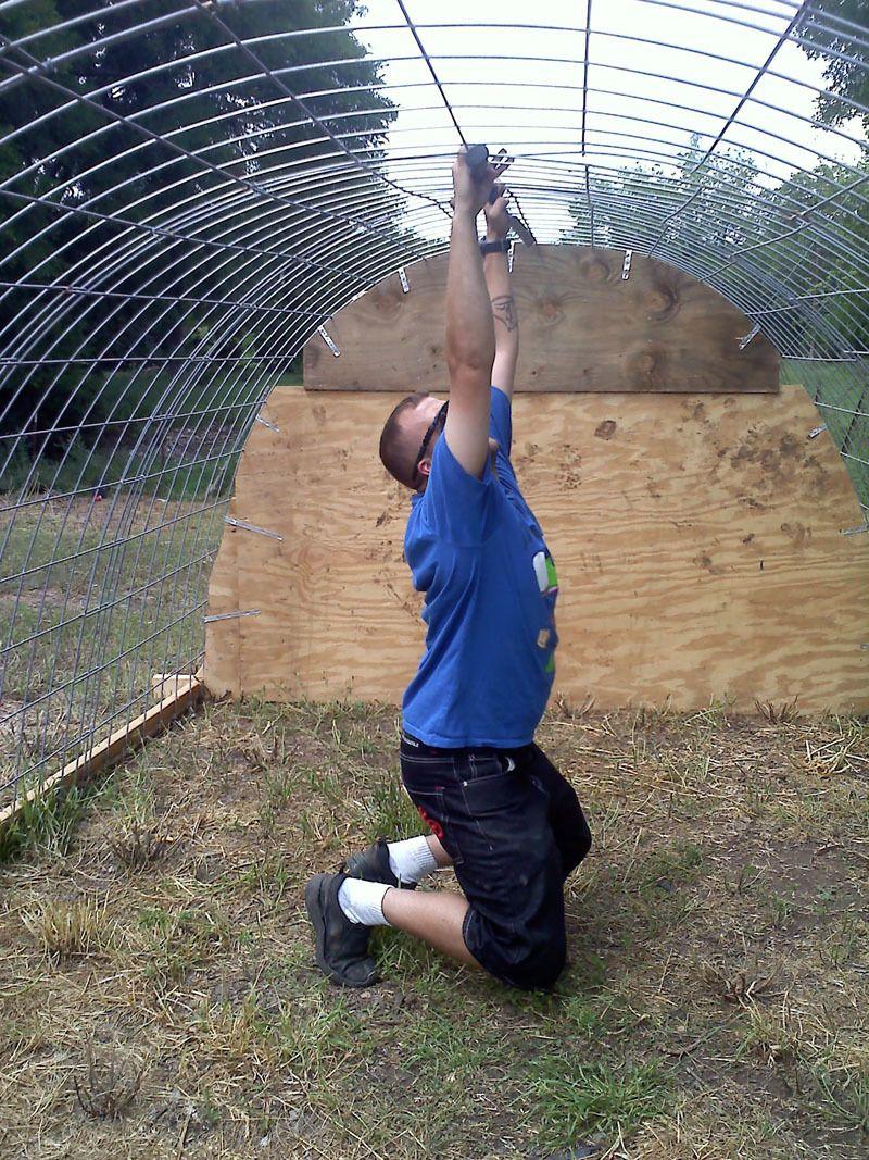 hoop coop 13.jpg