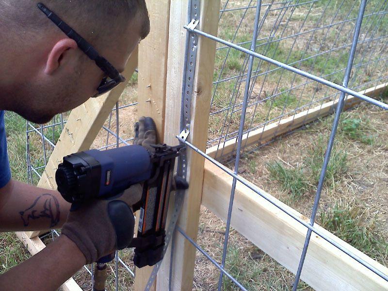 hoop coop 15.jpg