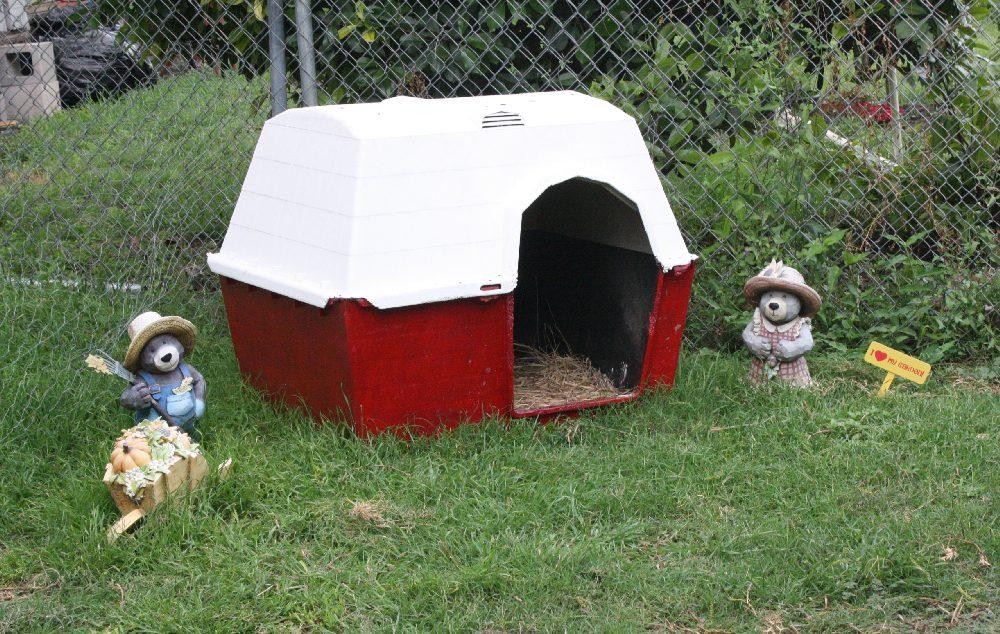 barnhouse.jpg