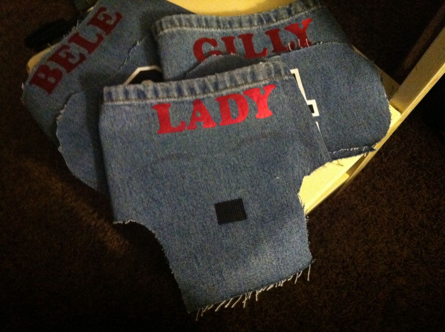 "Lucky number 7 Lady bird's home made saddle/apron...velcro for the ""wing"" protector"