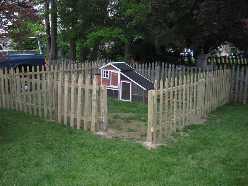 coop with fence.jpg