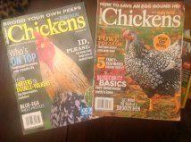 chicken mags2.jpg
