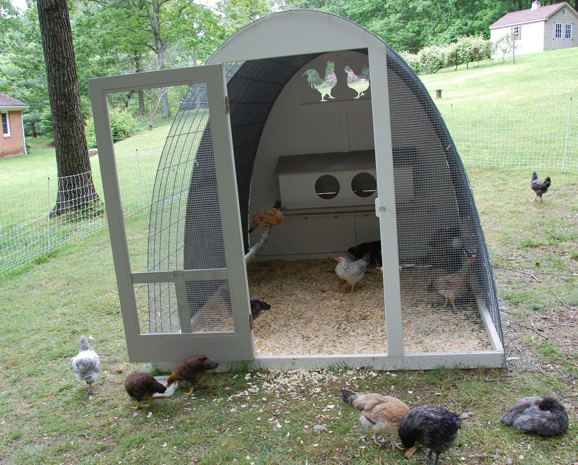 Egg shaped hoop coop backyard chickens community - Como hacer un gallinero ...