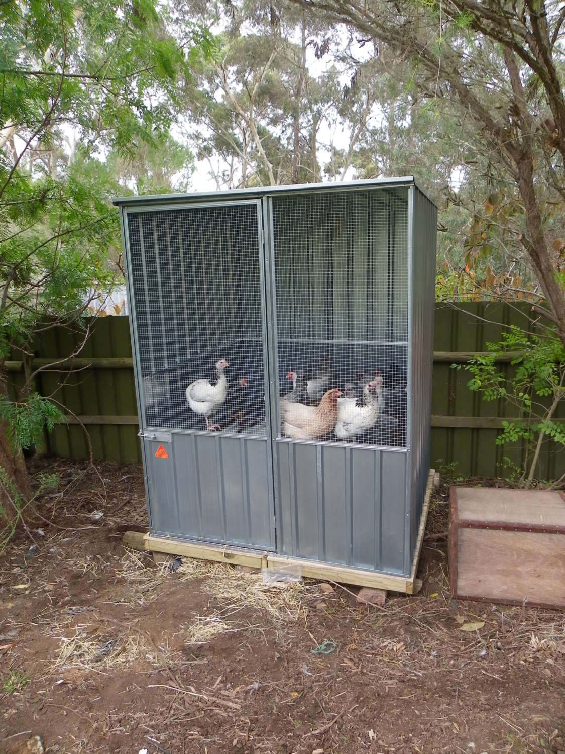 backyard chicken coops bunnings diy chicken coop ideas