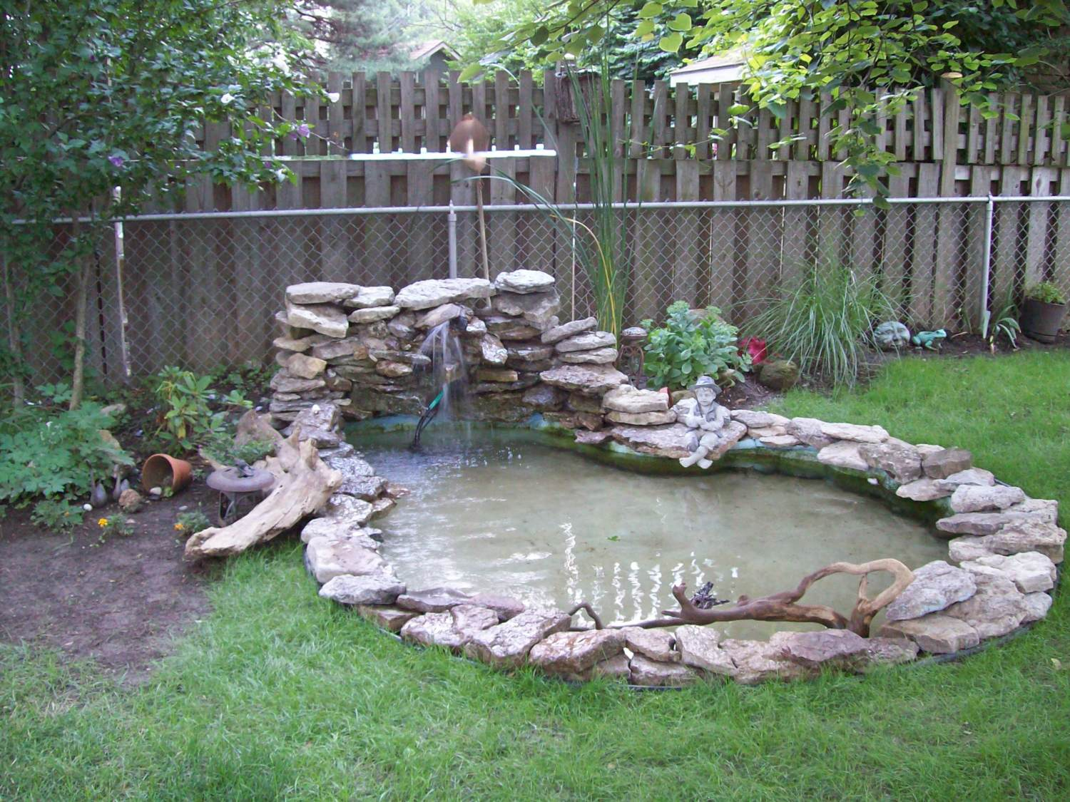 Post your exotic domestic duck aviary pool pics page 29 for Backyard duck pond