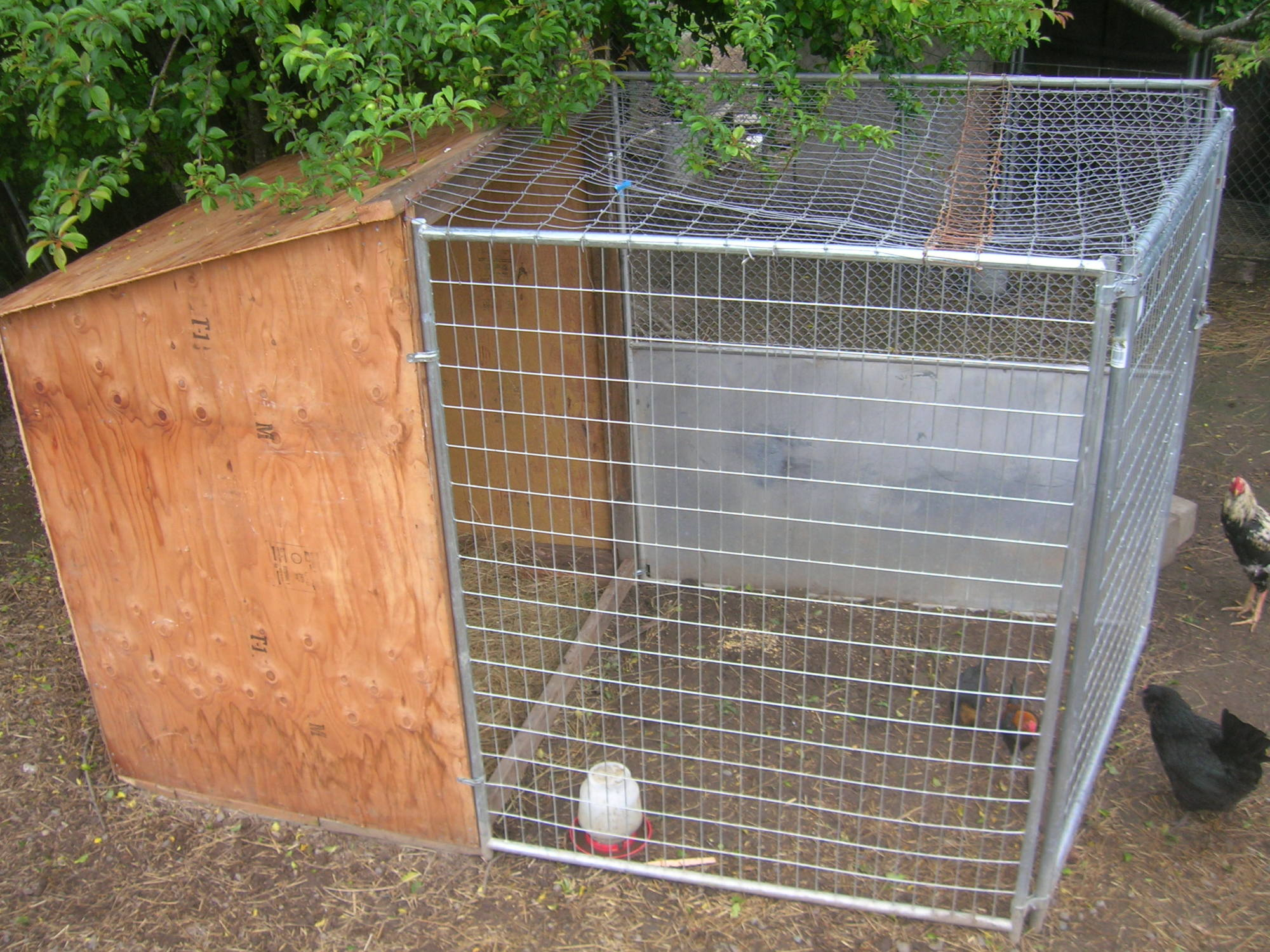 can someone show me there gamefowl pens page 2 backyard chickens