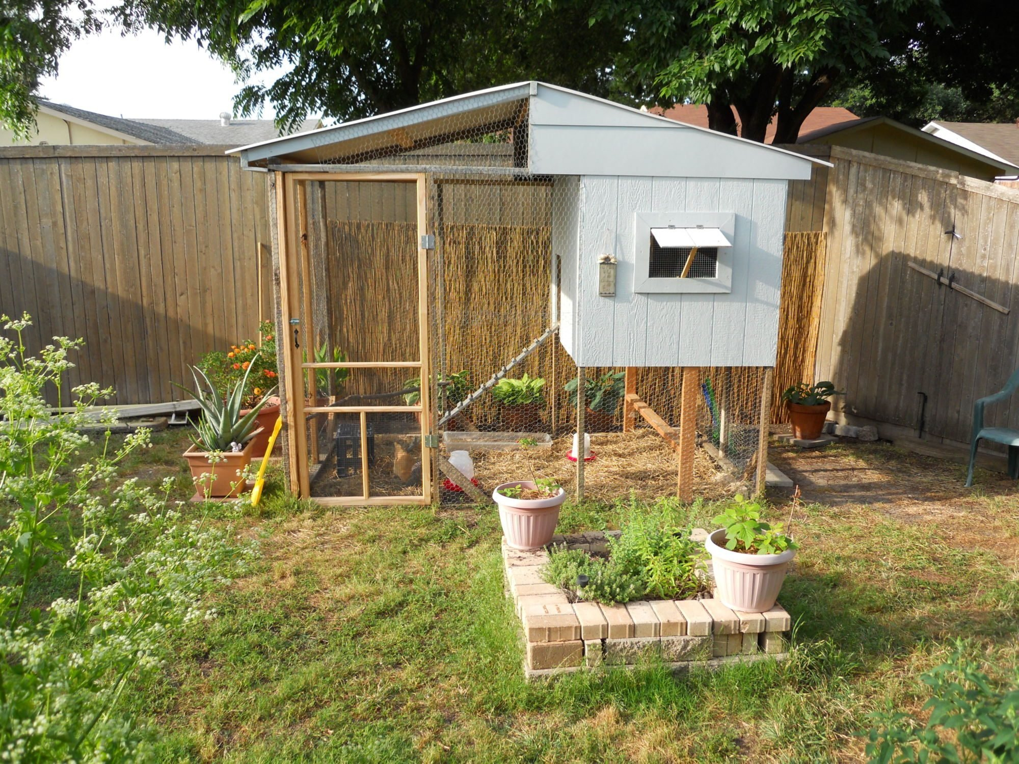 In search of pictures of suburban backyard coops! - Page 3