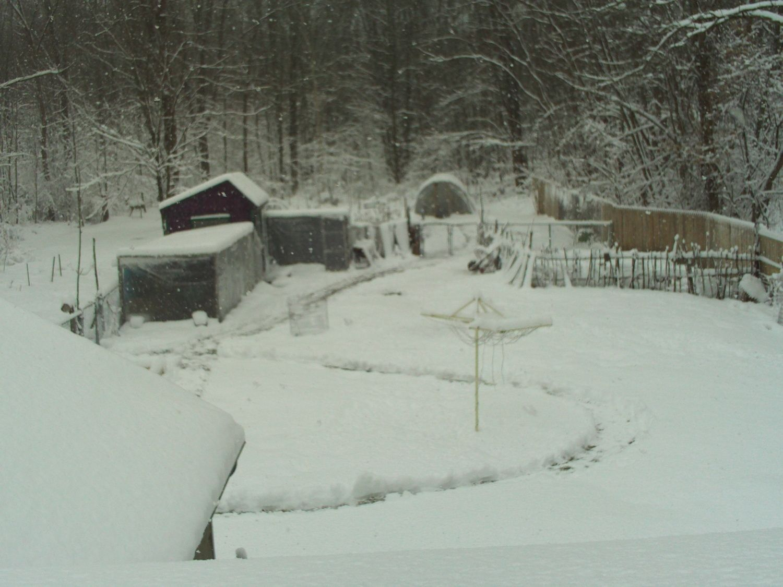 winter 2012 first snow 009.JPG