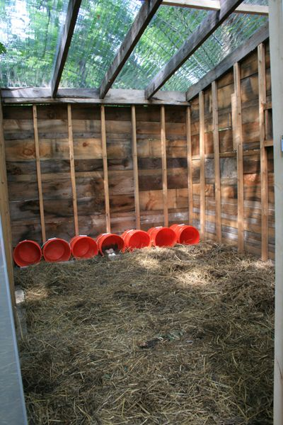 New duck house pen lots of pictures finally for Duck hutch ideas