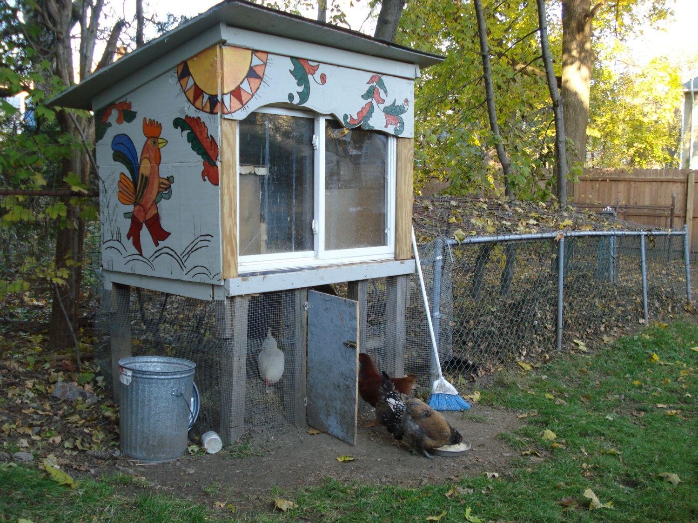 Hipster Backyard Chickens : Chicken Hipster Loft  BackYard Chickens Community