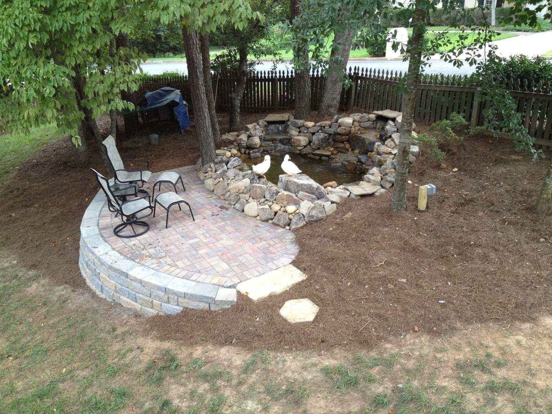 Duck pond set ups for Backyard duck pond