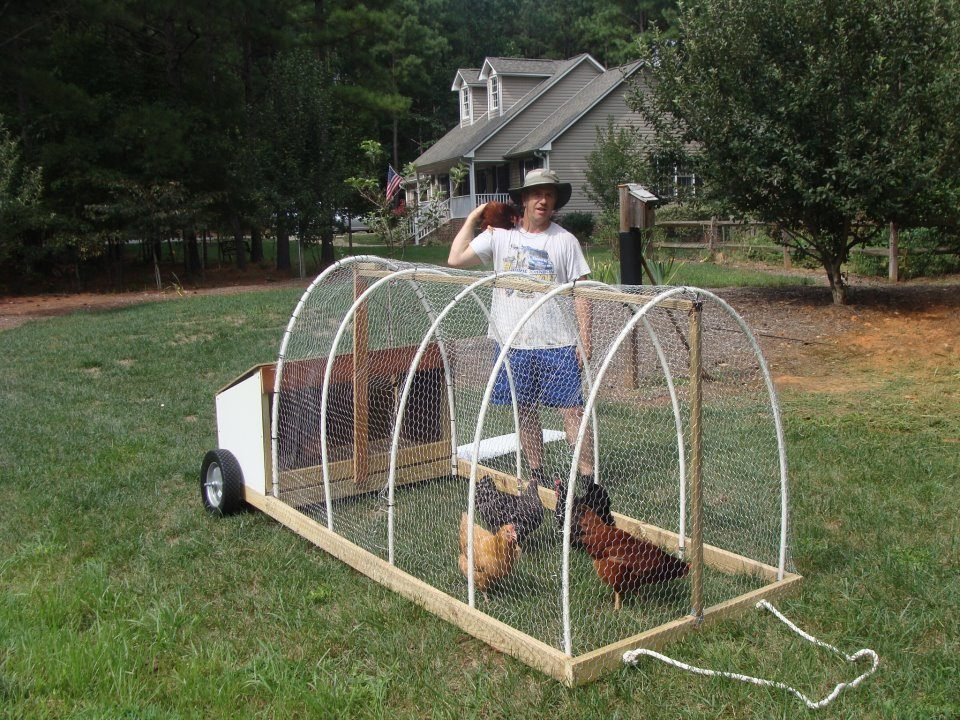 Cheap movable tractor your hens will love bugs and for Cheap chicken tractor