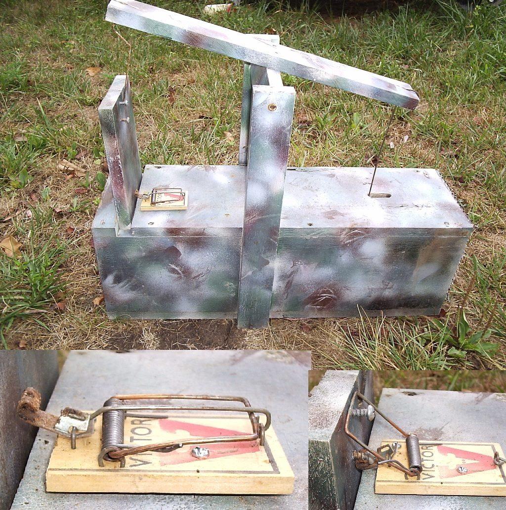 posts to building rabbit trap plans build a rabbit box trap mdc