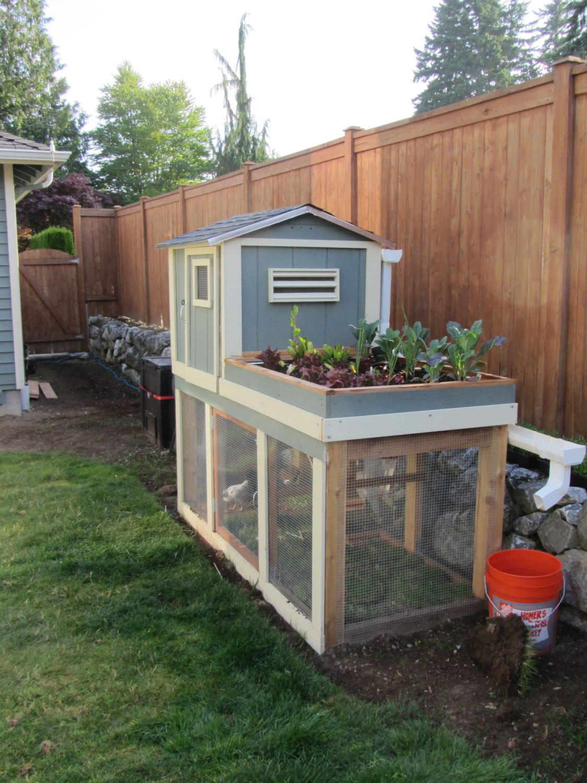 Backyard Chicken Coop Plans Backyard Chicken Coops: Post Your Chicken Coop Pictures Here!