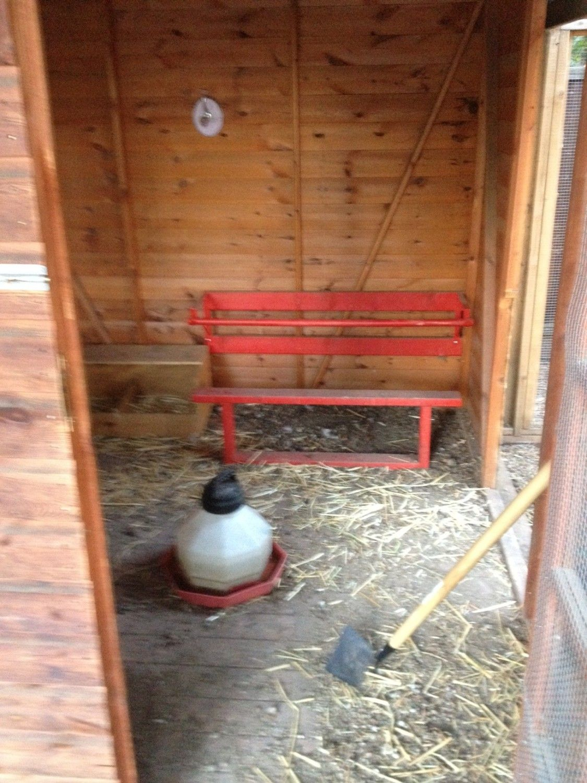 Help with chicken coop interior for Chicken coop interior designs