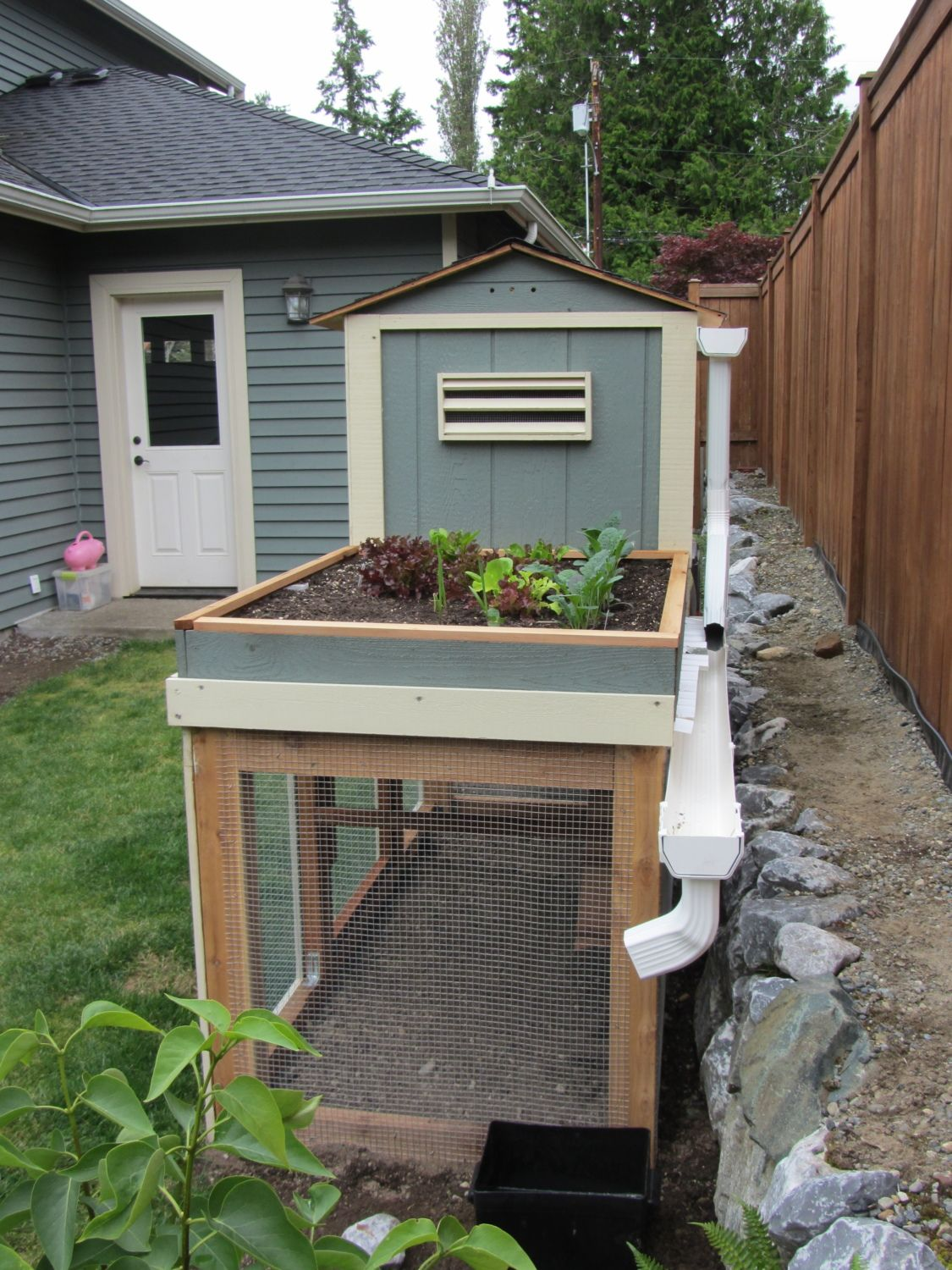 coop and garden my foray into coop building backyard chickens