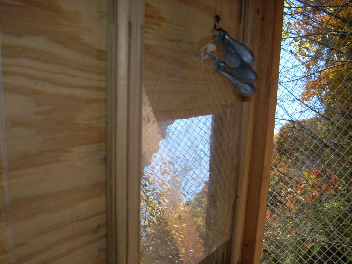 This is a difficult picture to see (difficult to take as well) but this is the POP door. Itu0027s basically Plexi-glass on two tracks and some fishing weights ... & My DIY automatic chicken POP door opener/closer | BackYard Chickens
