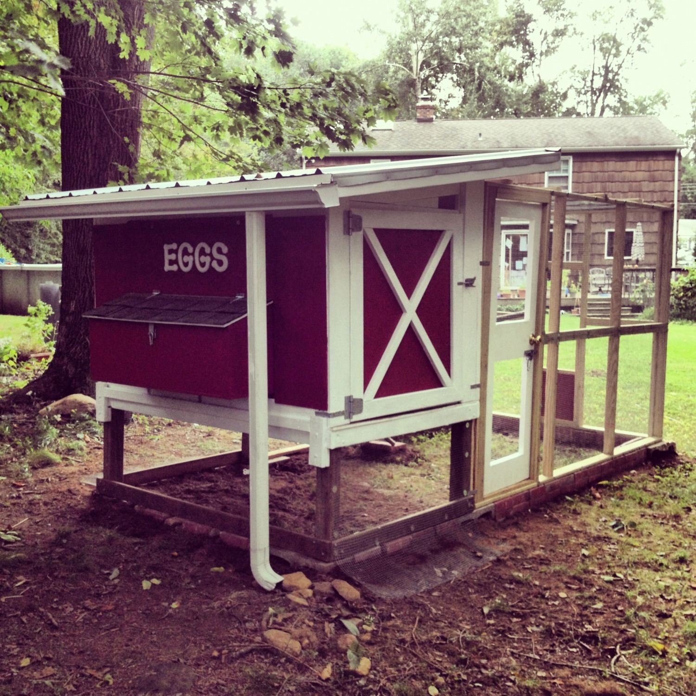 Harvester Egg Farm Backyard Chickens Community