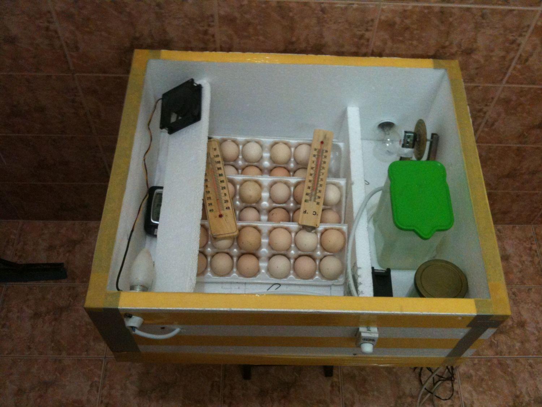 Инкубаторы для яиц Блиц, Поседа - продажа бытовых