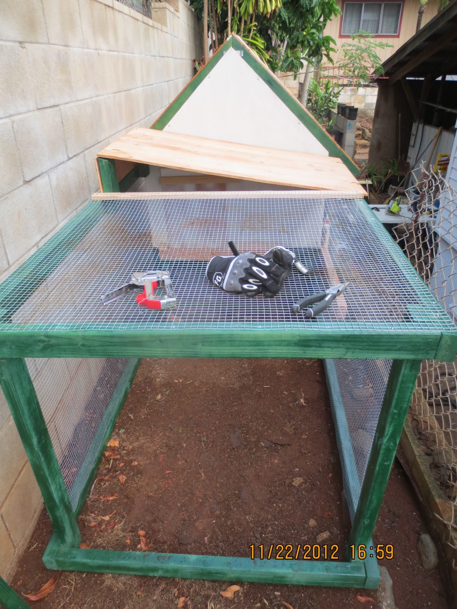 Chicken808style Backyard Chickens Community