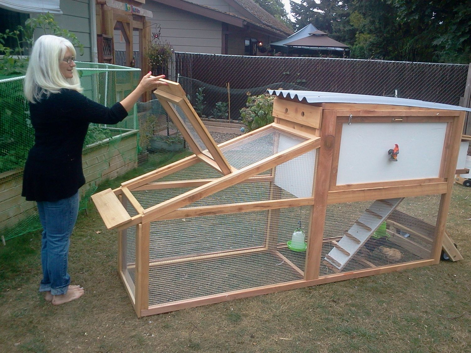Coop For Silkies Backyard Chickens