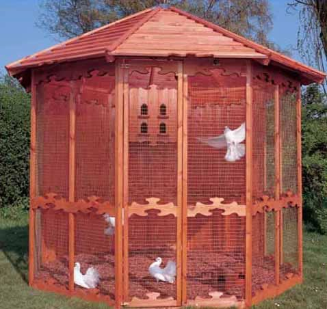 Future Project I would like to build. Only mine will be 12'x12' have only 3 sides screened with 5 larger nest boxes on the remaining panels (app.100sq.ft.)