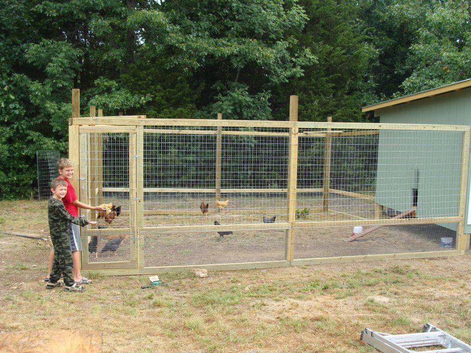 Quot O Quot Family Chicken Coop Backyard Chickens Community