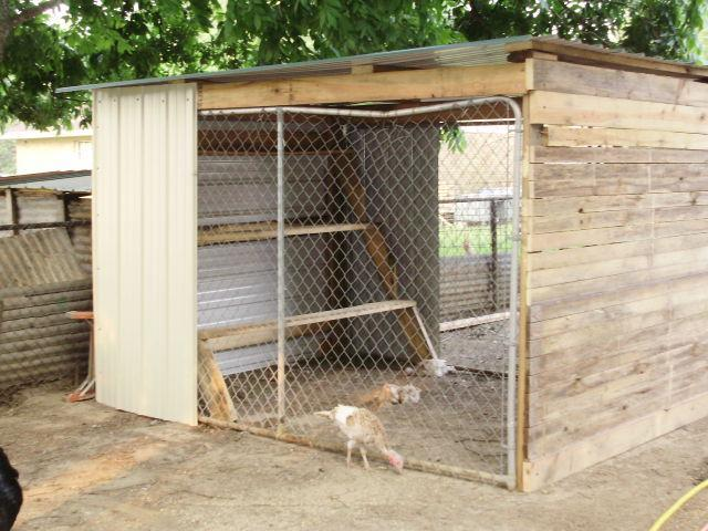 how to keep animals out of chicken coop