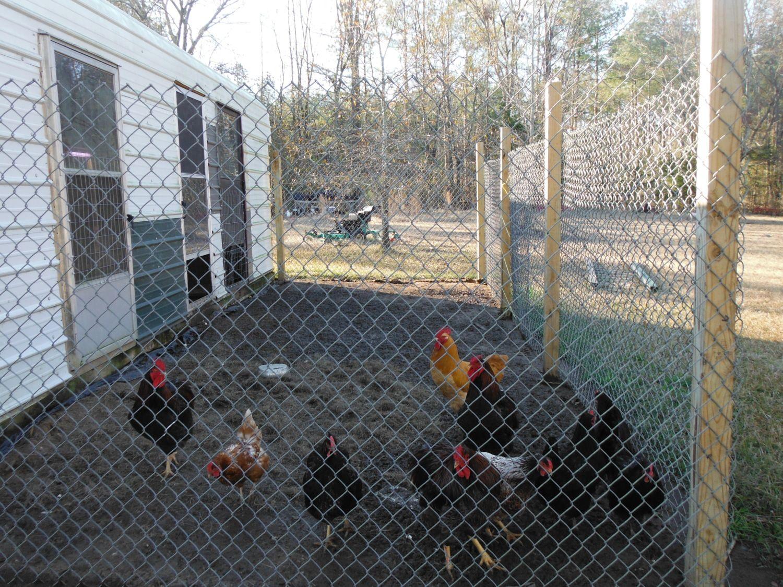 Carport Coop Backyard Chickens