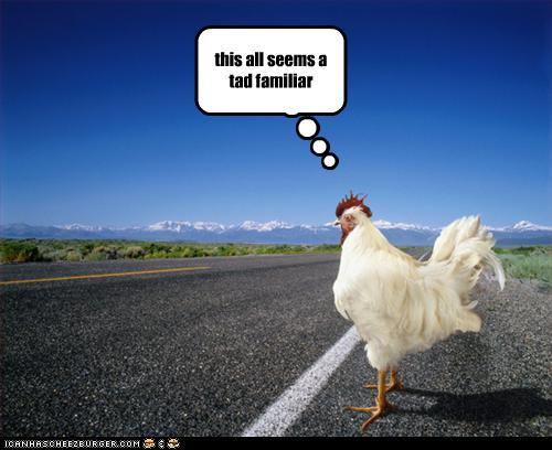 funny-pictures-chicken-crosses-road+(1).jpg