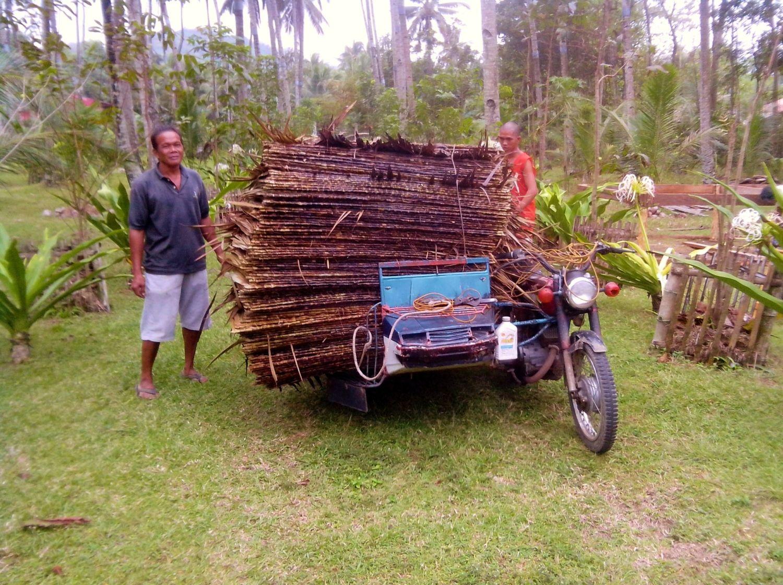 The Balay Kubo Nipa Hut Backyard Chickens Community