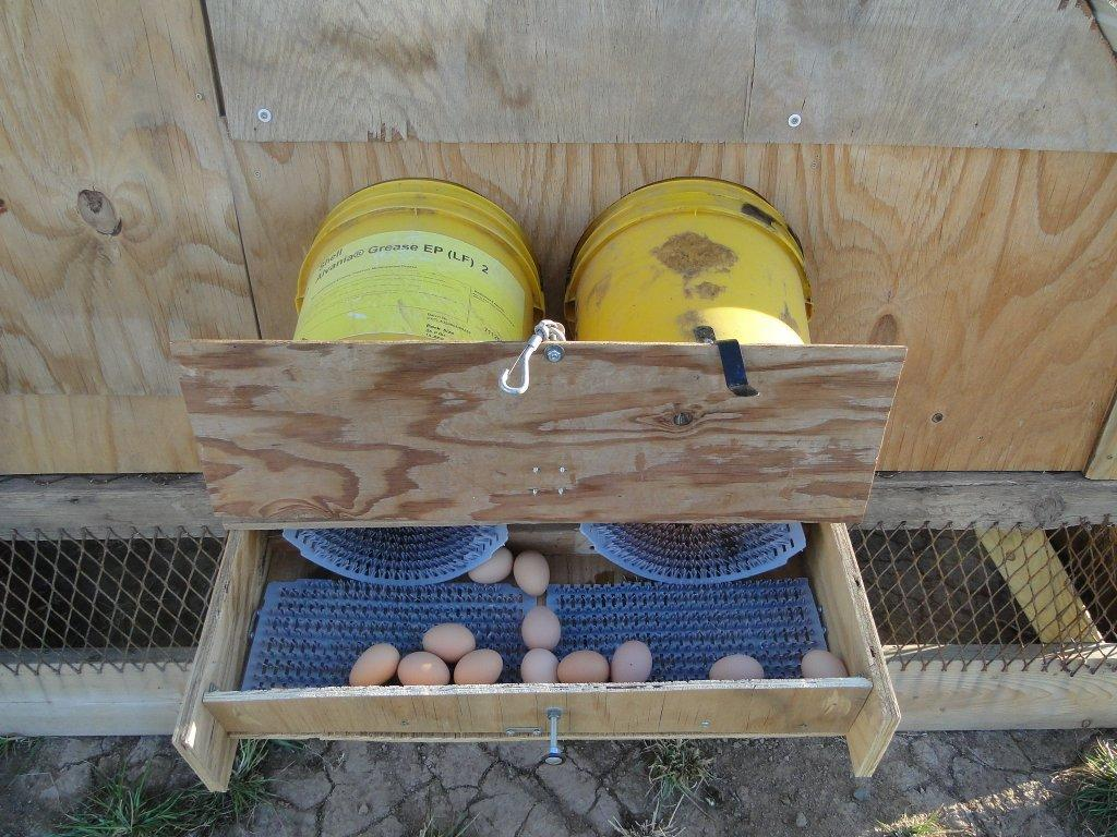 Randomness Chicken Coop From Pallets