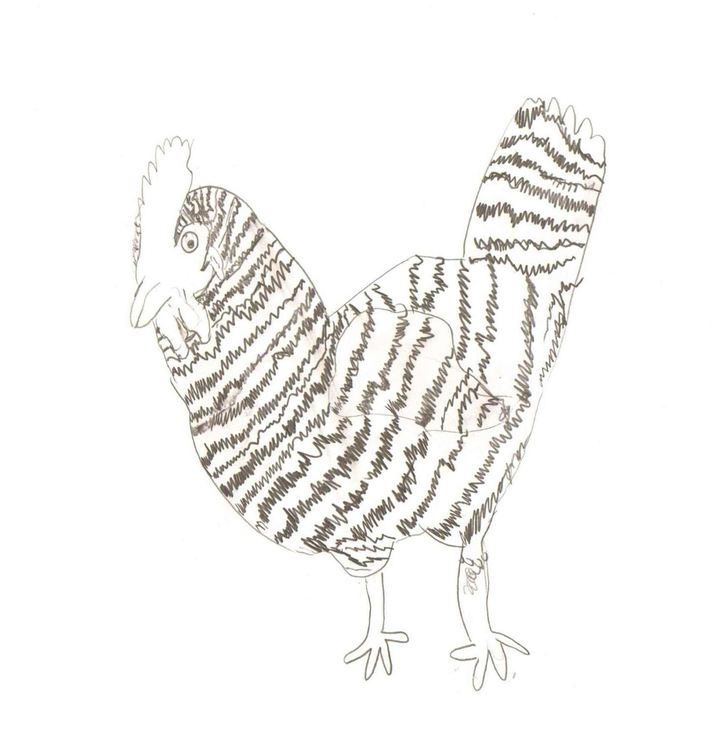 you can draw any chicken other poultry aloud