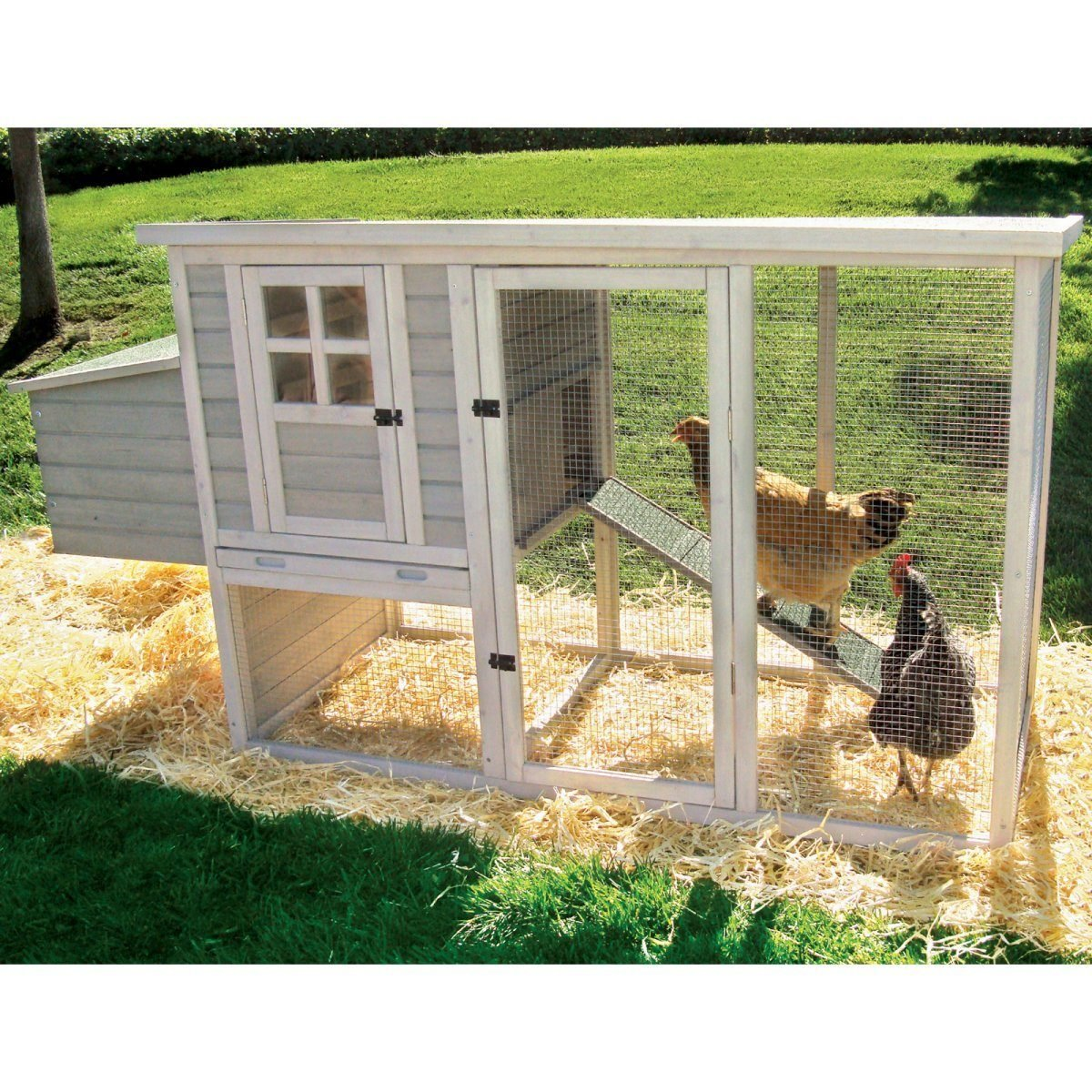will chickens sleep in the coop with a light on backyard chickens