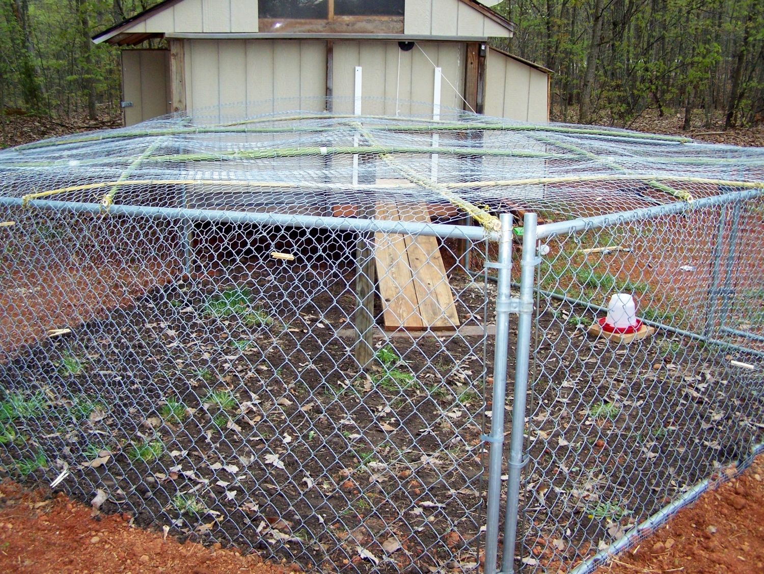 Run gate help requested please? Picture heavy! | BackYard Chickens