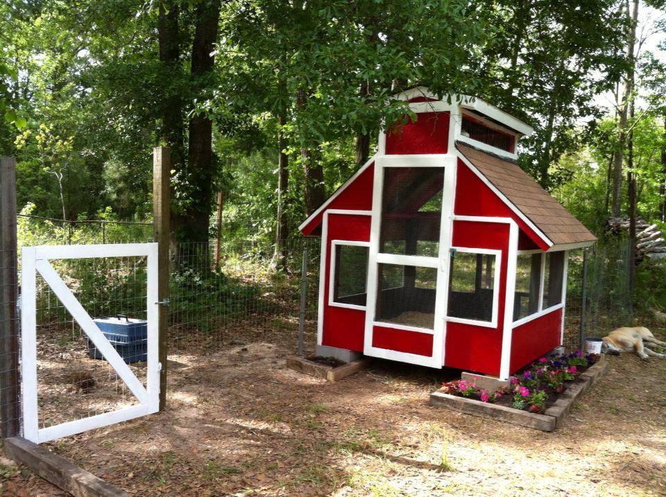 School of duck house backyard chickens community for Duck house door size