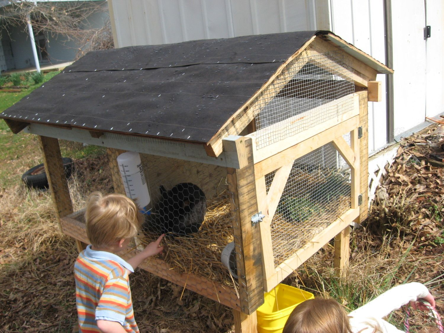 please show me your rabbit hutches backyard chickens