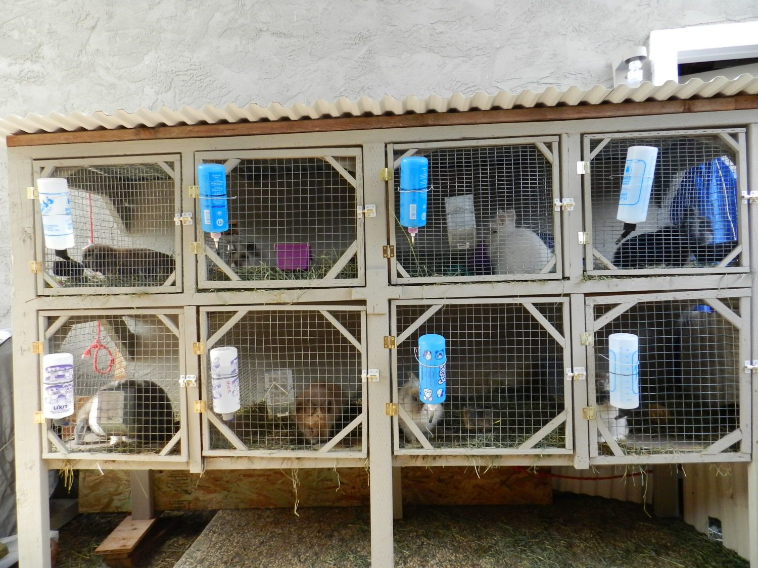 diy rabbit hutch plans for breeding plans free